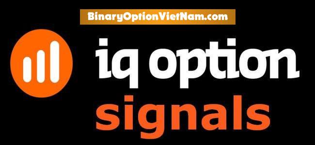 Các Tín Hiệu Trong Giao Dịch Trong IQ Option Có Thực Sự Quan Trọng?