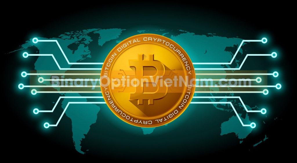Lời Khuyên Tốt Nhất Cho Nhà Đầu Tư Cryptocurrency Dài Hạn Tại IQ Option
